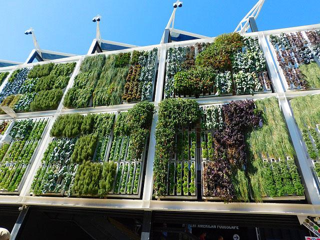 jardin-vertical-en-edificio